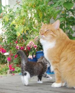 Farbror Foppa vr också med ute och kollade till barnen på deras första dag i rastgården
